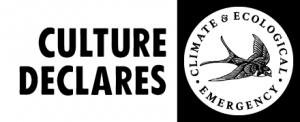 CultureDeclaresKite-HORIZ-BW-SM